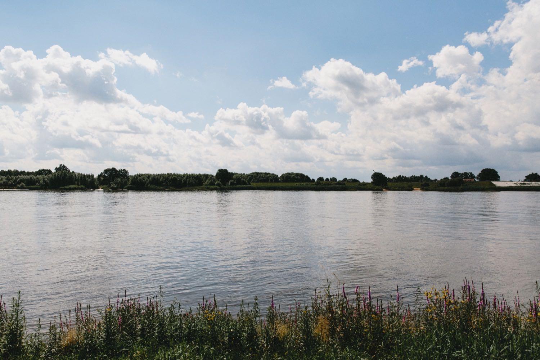 Blick auf die Elbe in Kirchwerder in Hamburg bei strahlend blauem Himmel