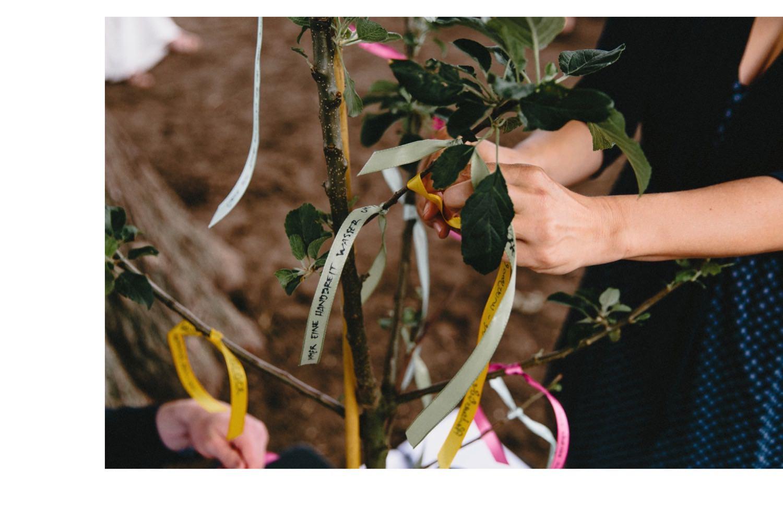 Gute Wünsche der Gäste werden während der freien Trauungszeremonie an einen Apfelbaum gebunden