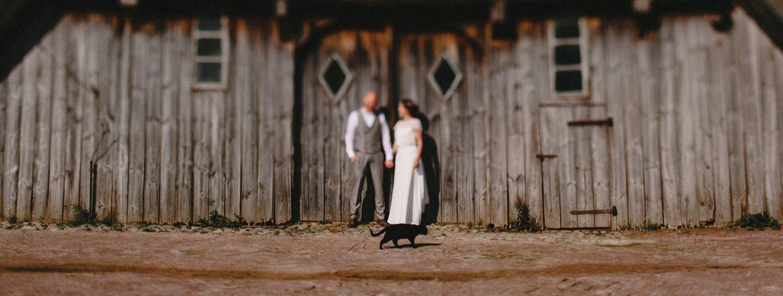 Braut und Bräutigam stehen vor einer alten denkmalgeschützten Scheune auf dem Hof Eggers und im Vordergrund läuft eine Katze durchs Bild